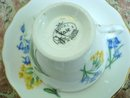 ROYAL VALE TEACUP SET - Cup and Saucer