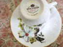 TEACUP and SAUCER SET by ROYAL WINDSOR CHINA