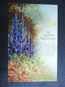 Tuck's Oilette Postcard