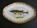 Beautiful Antique Dish Karlsbad