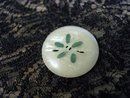 Vintage Celluloid  Button