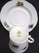 Wonderful Cup and Saucer Fine East German Porcelain