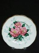 Pretty Vintage Plate CAMELLIA