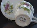 Teacup and Saucer by Sadler England