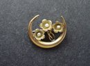 Charming Victorian Brooch Pin