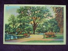 Linen Postcard Prospect Park Brooklyn N Y