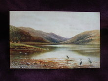 Tuck's Oilette Postcard Loch Dhu Signed