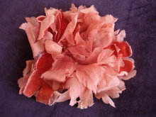 Coral Silk  Rose  for Dress or Millinary