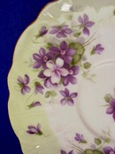 English China Cup & Saucer VIOLETS