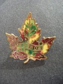 Colorful Enamel Brooch Maple Leaf CANADA