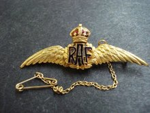RAF Gold Pin - Golden Wings
