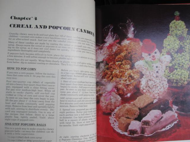 The Complete Wilton Book Of Candy Copyright 1981 1st Edition  Vintage