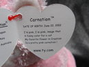 Ty Beanie Baby Carnation The Kitty Cat