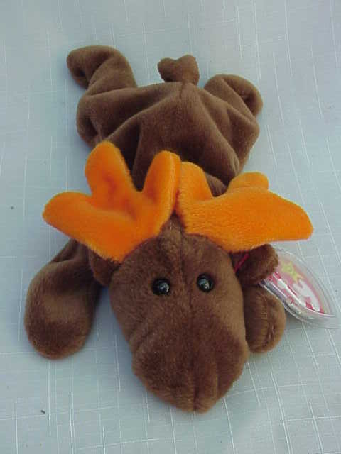 Ty Chocolate Moose  Beanie Baby