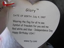Ty Glory The Patriotic Teddy Bear Retired Beanie Baby