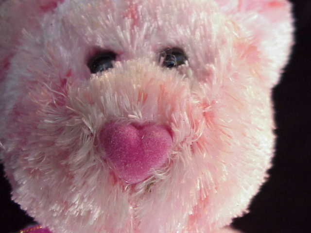 Ty Smitten  Beanie Baby Teddy Bear Valentine's Day Heart