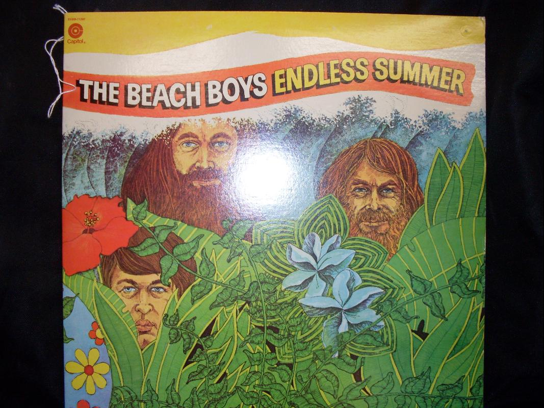 THE BEACH BOYS ENDLESS SUMMER