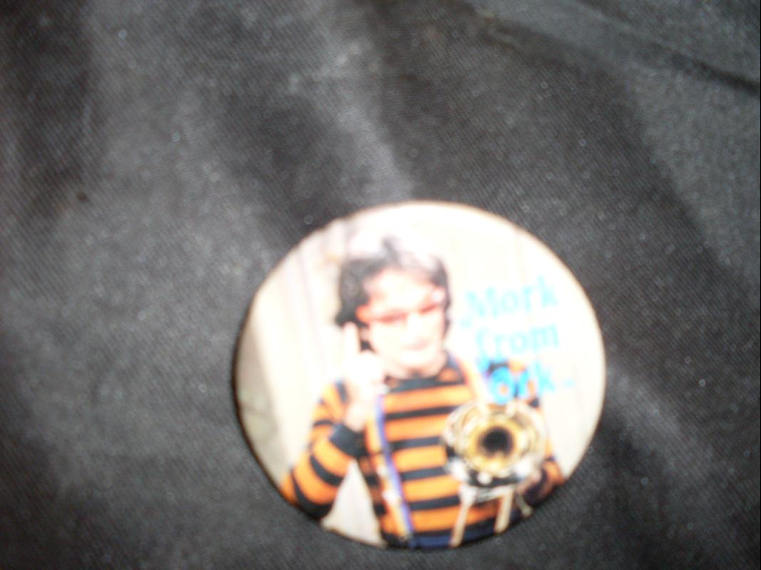 mork and mindy pin