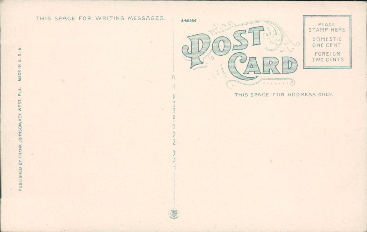 Vintage postcard, Key West Florida, Naval station and custom house, C.T. American Art, Frank Johnson