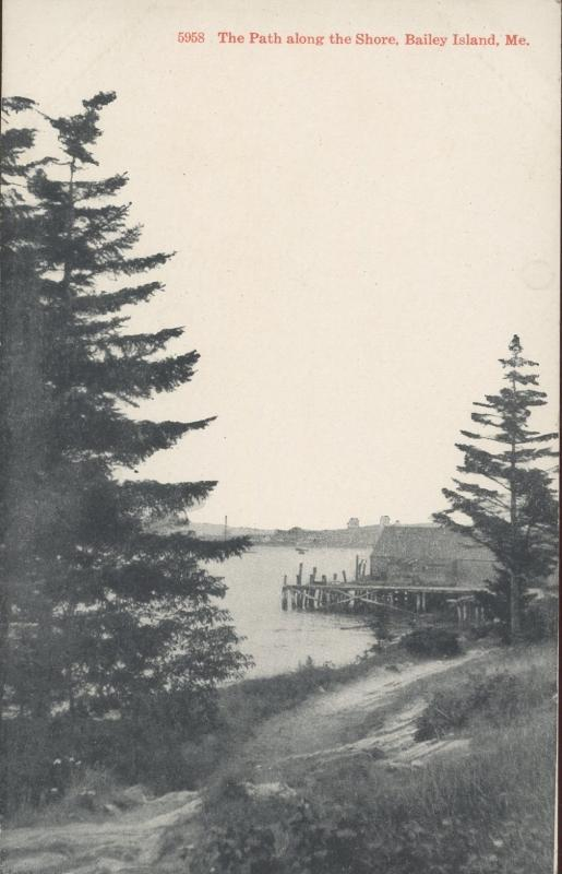 Brooklyn Postcard Company The Path Along the Shore Baily Island Maine Postcard 1917 #5958