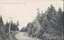 Brooklyn Postcard Company The Old Wood Road Baily Island Maine Postcard 1917 #5954