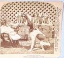 STEREOVIEW -  A GIRL AND HER DOGS