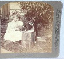 STEREOVIEW - A GIRL AND HER DOG & CAT
