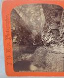 STEREOVIEW -  WATKINS GLEN -