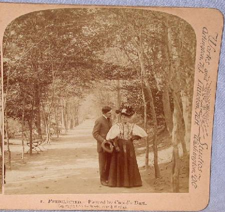 GREAT STEREOVIEW OF A VICTORIAN COUPLE IN THE PARK