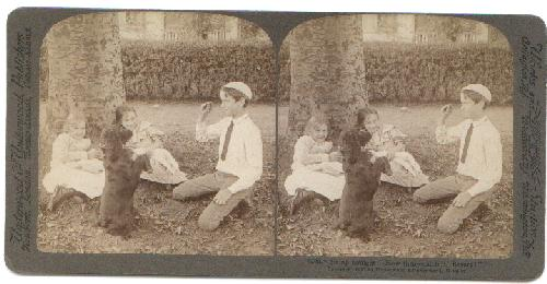 STEREOVIEW -  CHILDREN AND A DOG