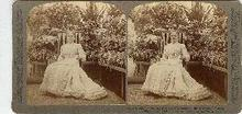 STEREOVIEW - Mrs. McKinley in the Conservatory