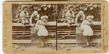 STEREOVIEW - THREE CHILDREN PICKING FRUIT