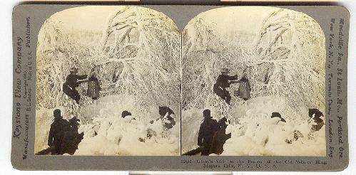 STEREOVIEW - Lilian's visit to the realms of the Old Winter King, Niagara Falls, N.Y., U.S.A.