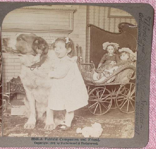 STEREOVIEW - A YOUNG GIRL & HER DOLLS & DOG