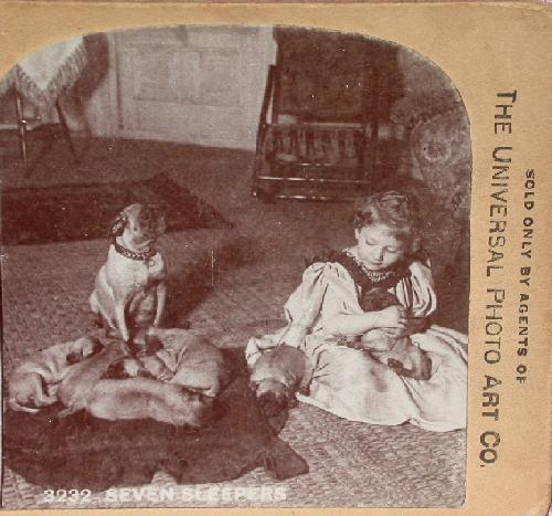STEREOVIEW - YOUNG GIRL WITH HER DOGS