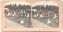 BEAUTIFUL HAND COLORED STEREOVIEW -