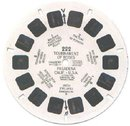 RICHARD NIXON ROSE PARADE VIEWMASTER REEL