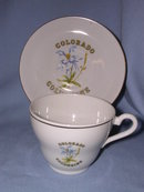 COLUMBINE, COLORADO SOUVENIR  CUP AND SAUCER