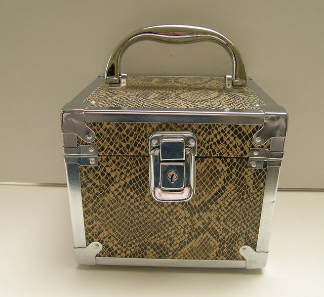 Square Box Metal and Snake Skin Handbag