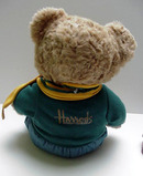 Harrods School Boy Teddy Bear