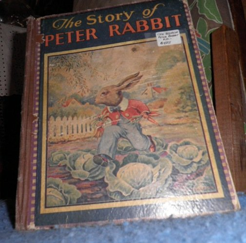 Book - The Story of Peter Rabbit B4811