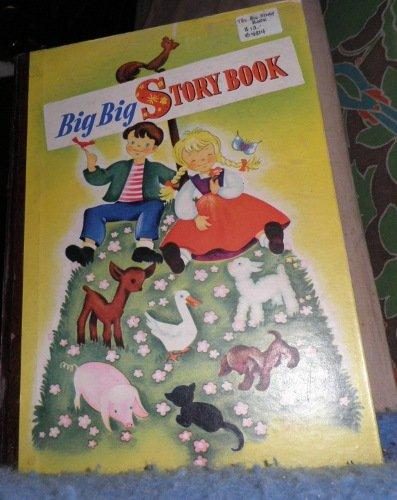 Book - Big Big Story Book B4814