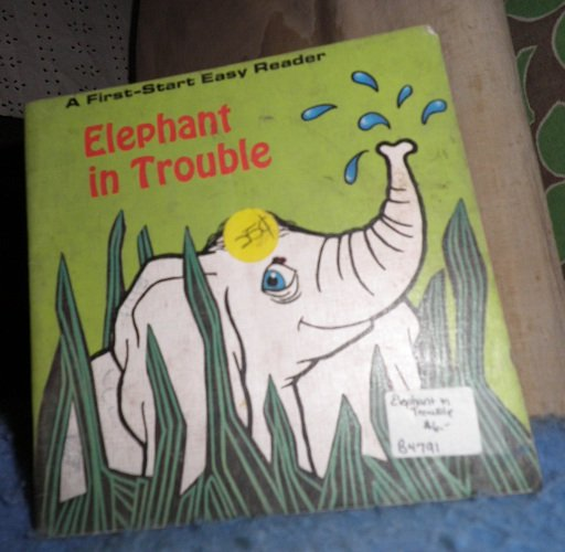 Book - Elephant in Trouble