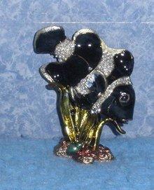 Jewel Box Fish Black