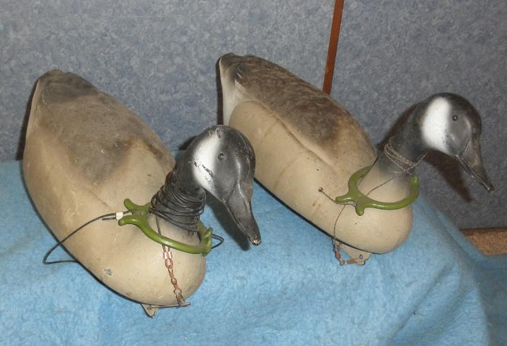 Decoy Duck DD372