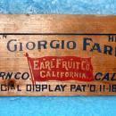 Box End - Dr Giorgio Farms B3206