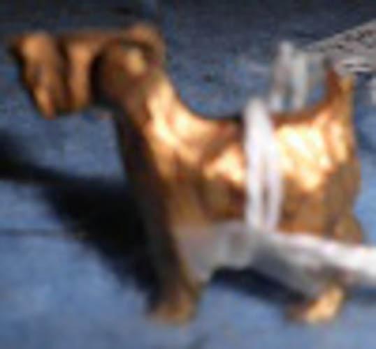 Dog - Tiny - Gold Metal B4621