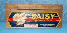 Daisy Crate End - Colorful