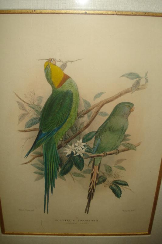 Pair Of Early Twentieth Century Lithographs,