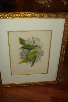 Original Nineteenth Century Hand Colored Lithograph By Kuelemanns,